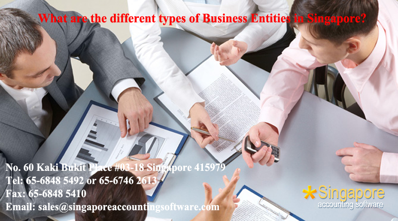 What are the different types of Business Entities in Singapore