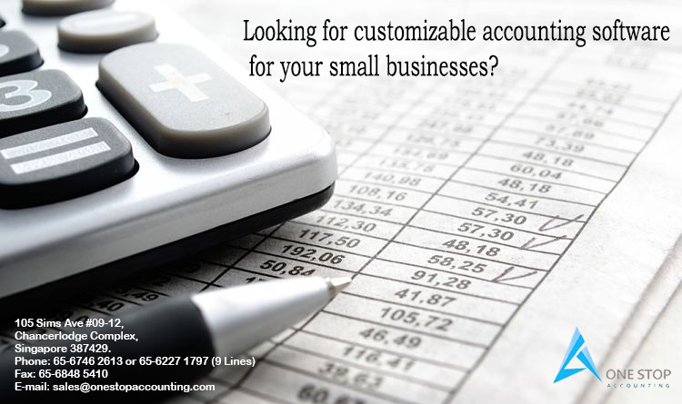 Looking for customizable accounting software for your small businesses?