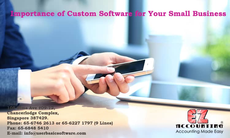 Importance of Custom Software for Your Small Busines
