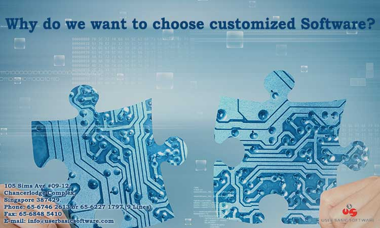 Why Do We Want To Choose Customized Software?