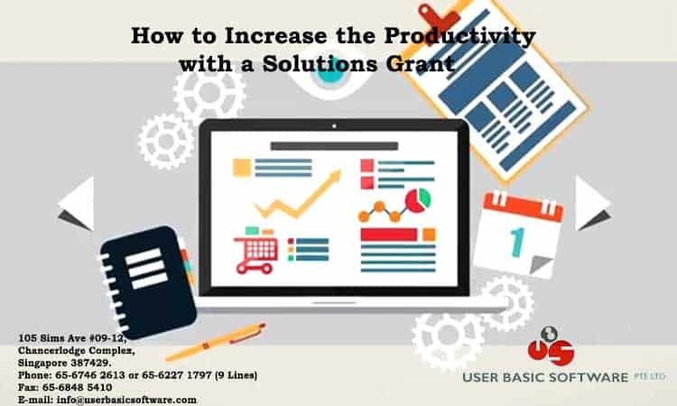 How To Increase The Productivity With A Solutions Grant Through Enterprise Singapore?