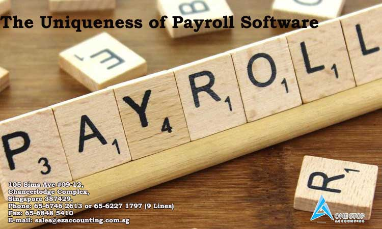 The uniqueness of Payroll Software
