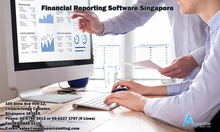 Financial Reporting Software Singapore
