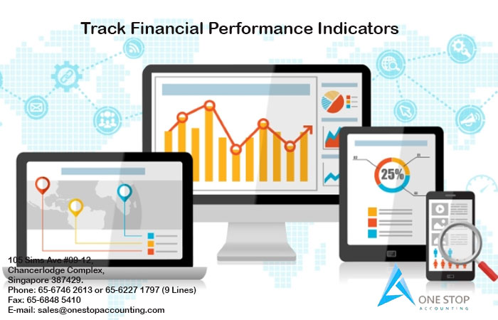 Financial Performance Indicators